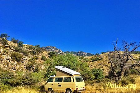 01984 Volkswagen Westfalia  Tucson, AZ