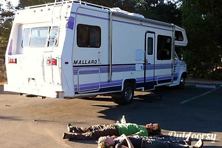 01991 Ford mallard  Los Gatos, CA