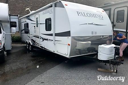 02012 Palomino Thoroughbred  Pelham, AL