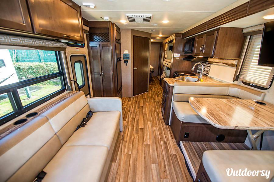 interior 2018 Thor A.C.E 30.2 Bunk Seffner, FL