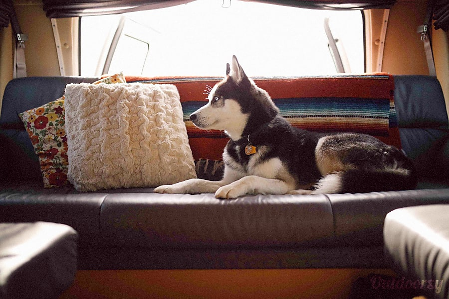 2008 Pleasure Way Excel - Big Beulah Portland, OR Fold-down couch transforms into queen sized bed.