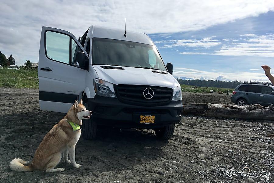 AK 2016 Alaska Special Sprinter4x4 Camper Van Anchorage