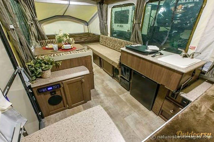 interior 2017 Forest River Palomino Gilbert, AZ