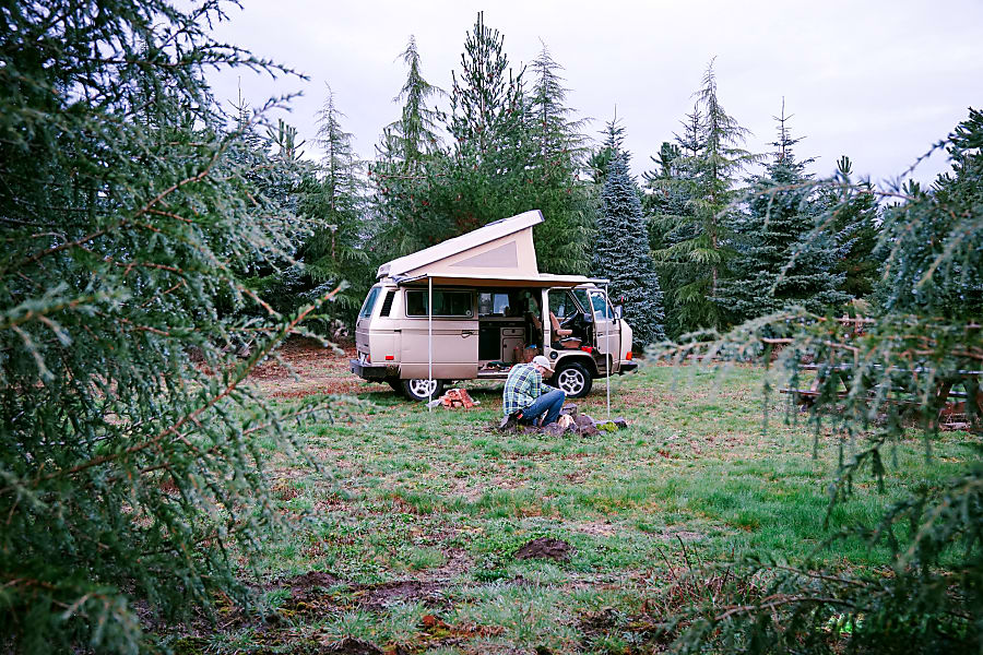 Peace Vans #18: Duckabush - Vanagon Full Camper Seattle, WA