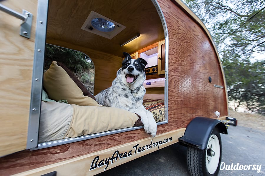2015 Teardrop Trailer Dog House Delux Edition Motor Home