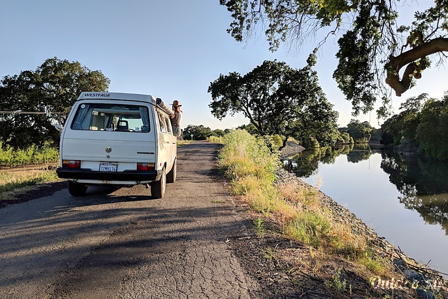 The Delta Breeze. VW Westfalia Sacramento, CA