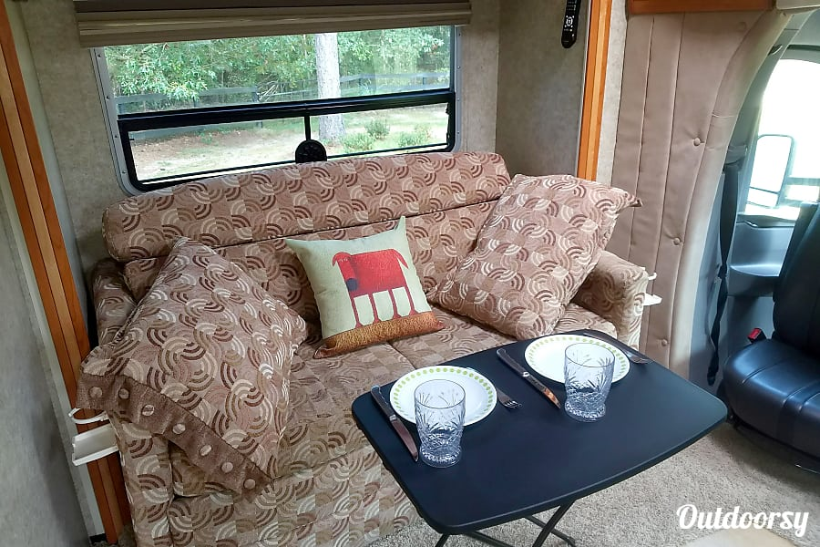 2009 Winnebago View Aiken, SC Fold Out Sofa Bed