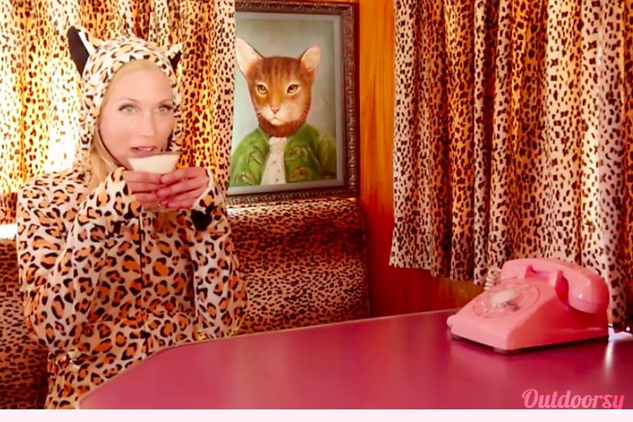 interior 1956 Vintage Pink Pleasurecraft Pinky Agoura Hills, CA