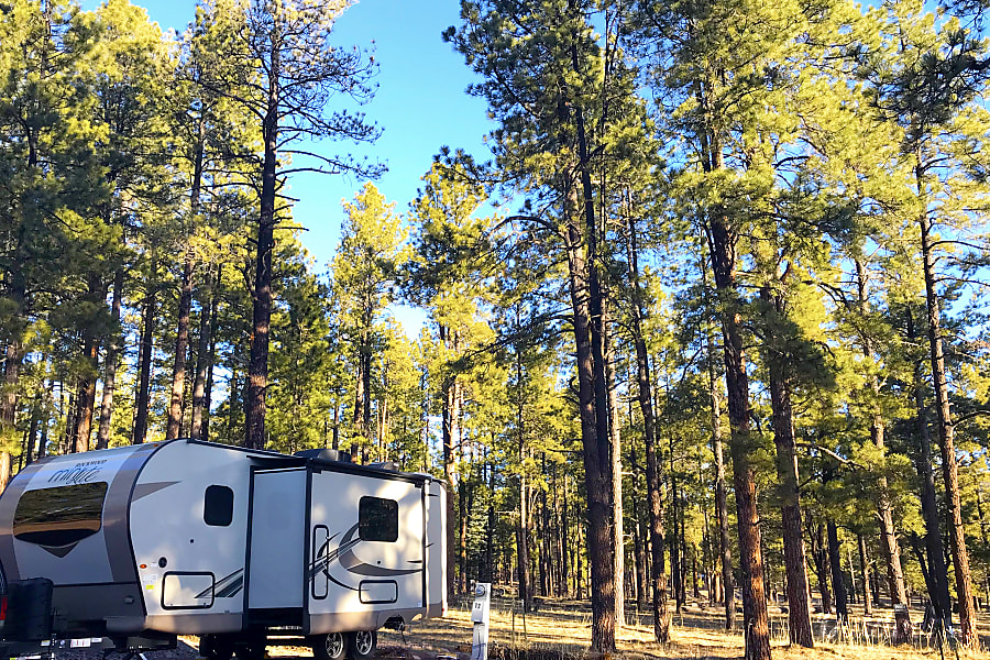 exterior Fun Filled Adventures with our 2019 Forest River Rockwood Mini Lite Austin, TX