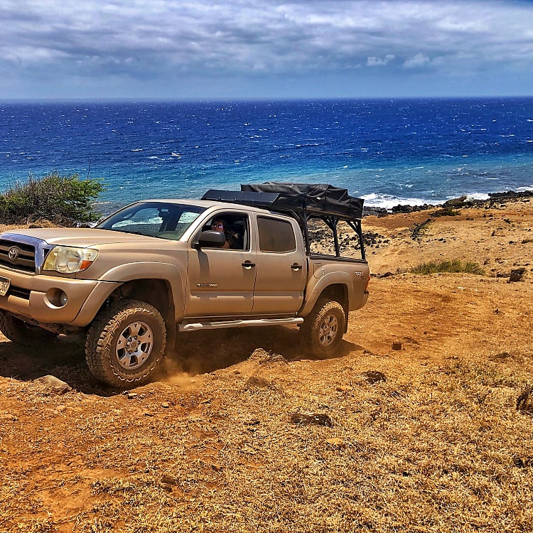 Take 'um there! The 4x4 and lift can go where ever your adventurous soul wanders