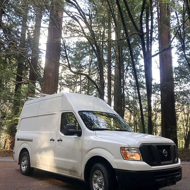 Van the Adventure exploring the California Redwoods.