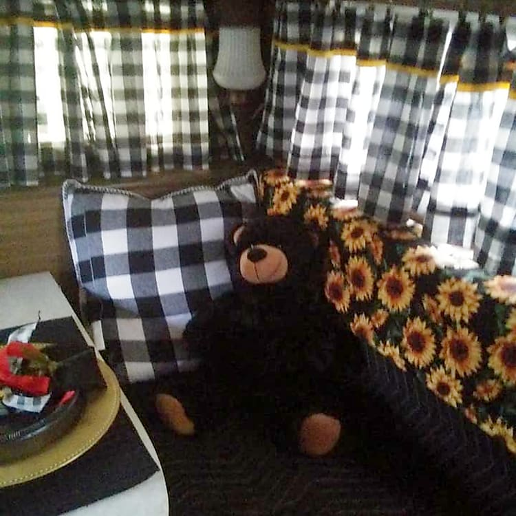 The bear/bee theme is carried throughout the camper... fully stocked with everything needed for your adventure.
