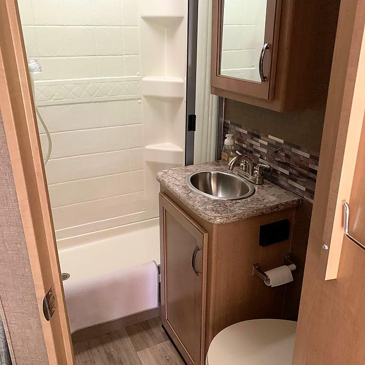 bathroom: toilet, sink, med cabinet for storage, shower