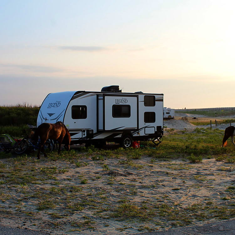 AssateagueStatePark,Maryland