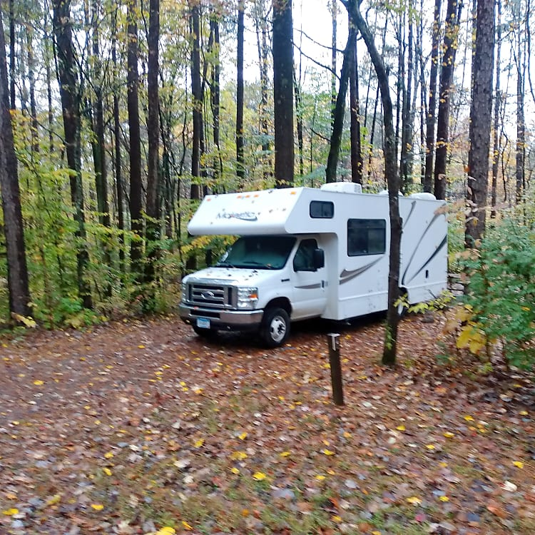 National Forest Campsite