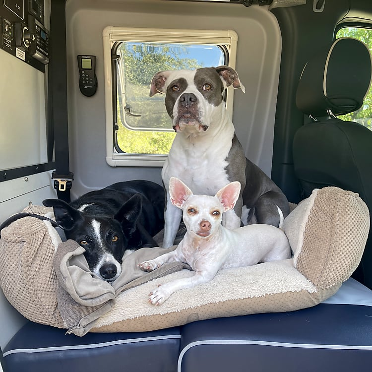 This is something we had custom made...You can convert the bench seat into a safe doggie seat so your fur babies can be apart of the action too.