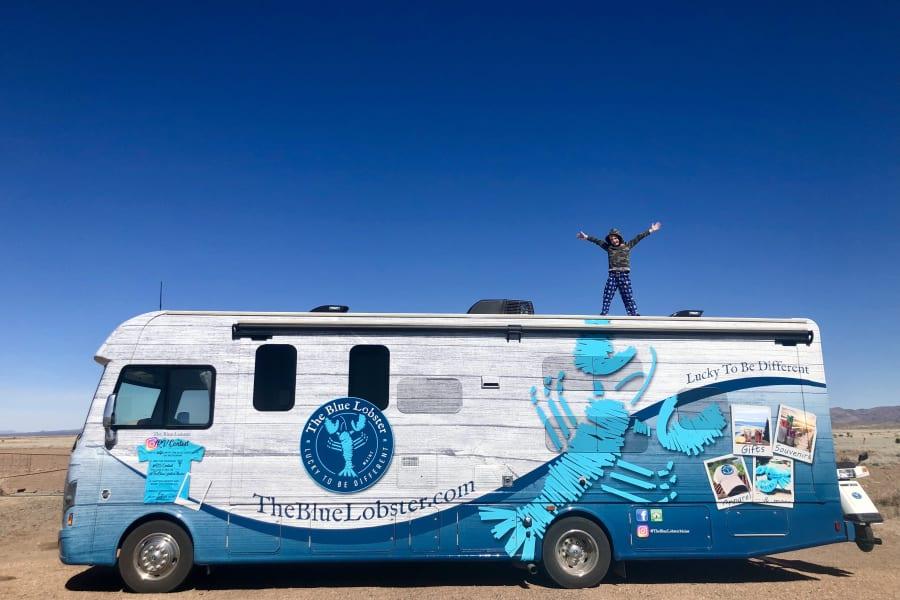 The Blue Lobster roaming through Texas