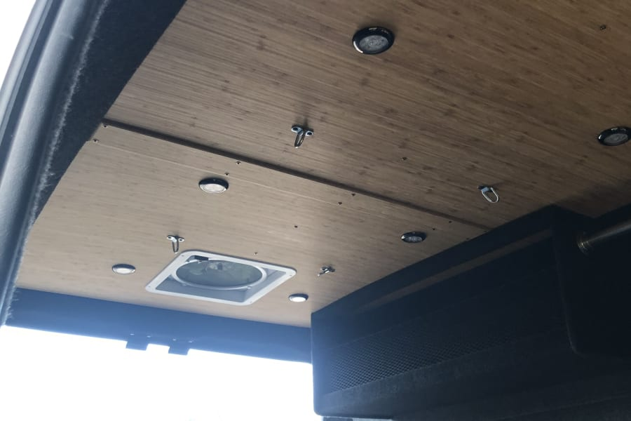 Dual ceiling fans. Can pull air in or circulate out.