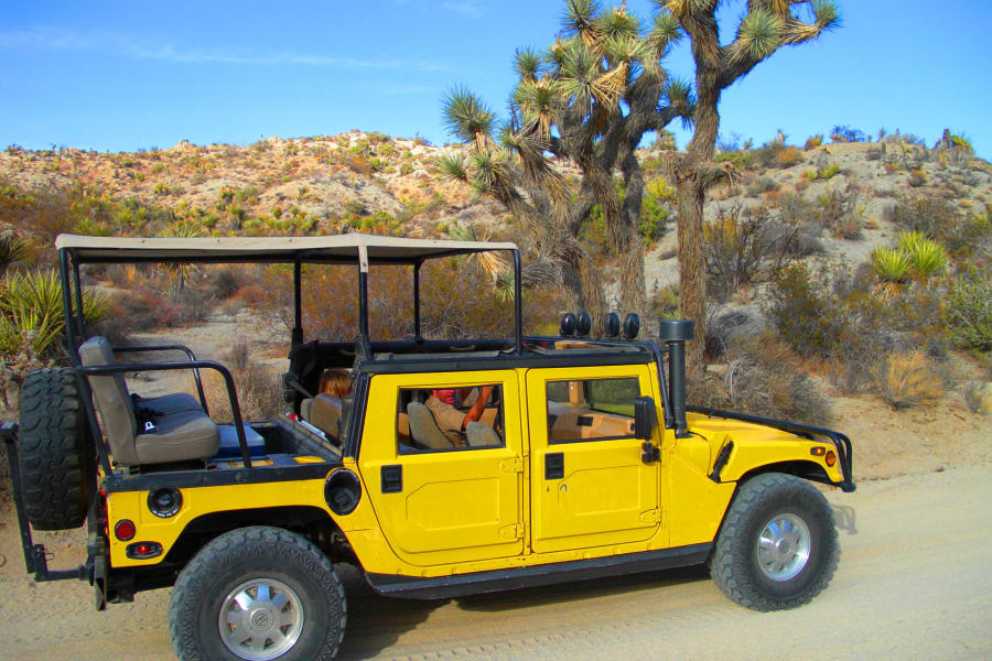 Take the Geology tour road in Joshua Tree - 20 miles of legal 4x4.