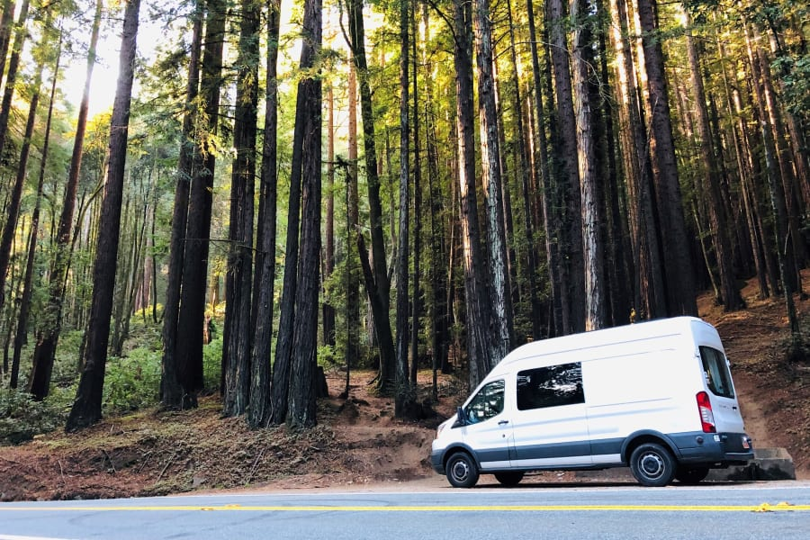 Redwoods is the home of the Van. Within 5 minutes after your arrival. You can start glamping along beautiful HWY9