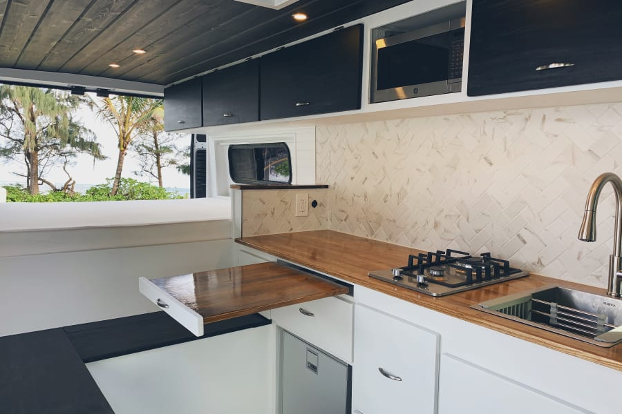 Microwave, Stove, Sink, and Fridge
