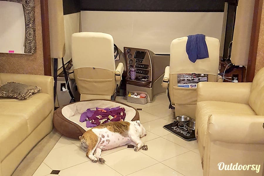 This is my English Bulldog named 'Sarge' taking a nap on the cool floor.  Sarge has traveled all over the country with us. . Forest River Berkshire 2013
