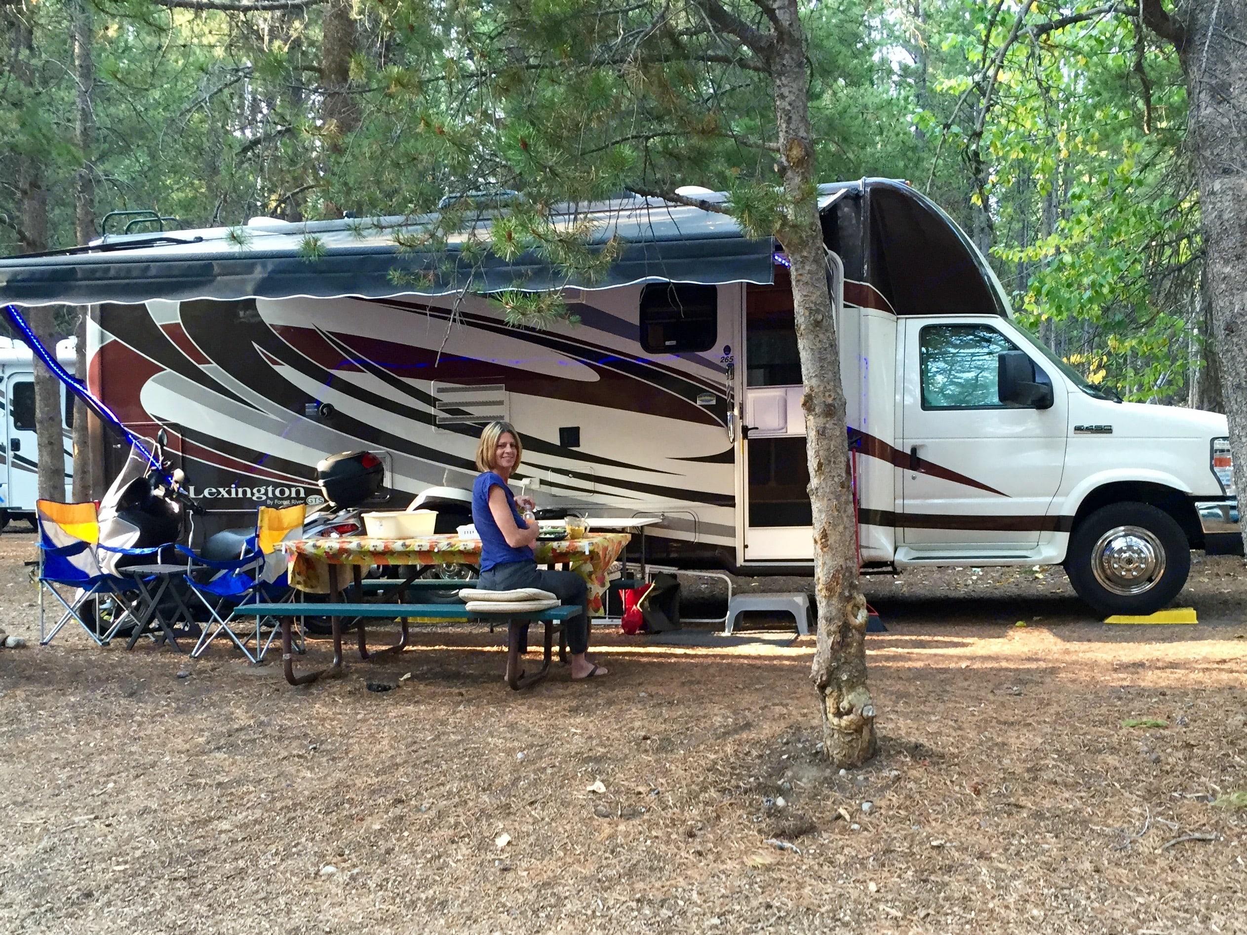 Forest River Lexington 2011