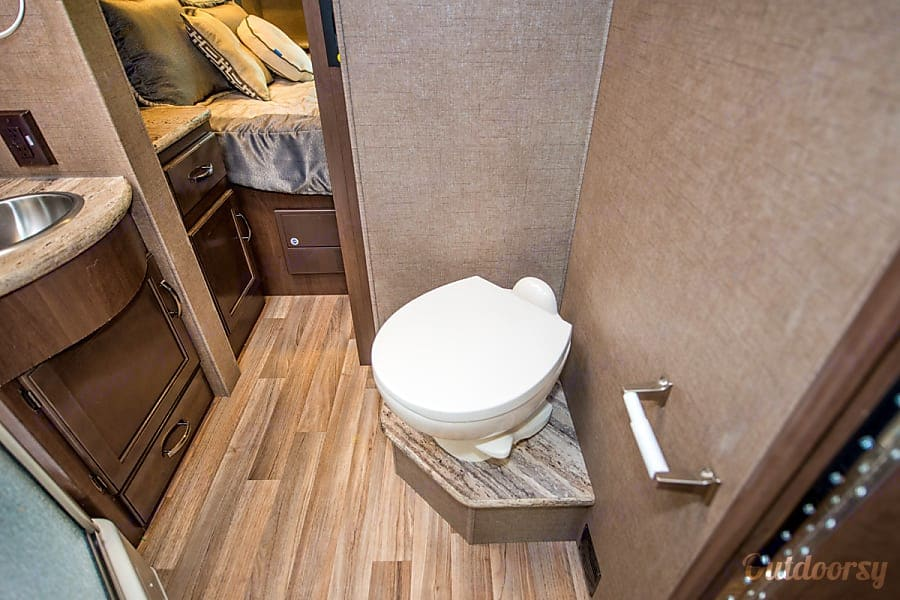 Walk through bathroom with toilet, sink and shower; makes for easy access to the back bedroom when the slide-out is retracted. . Thor Motor Coach A.C.E 2017