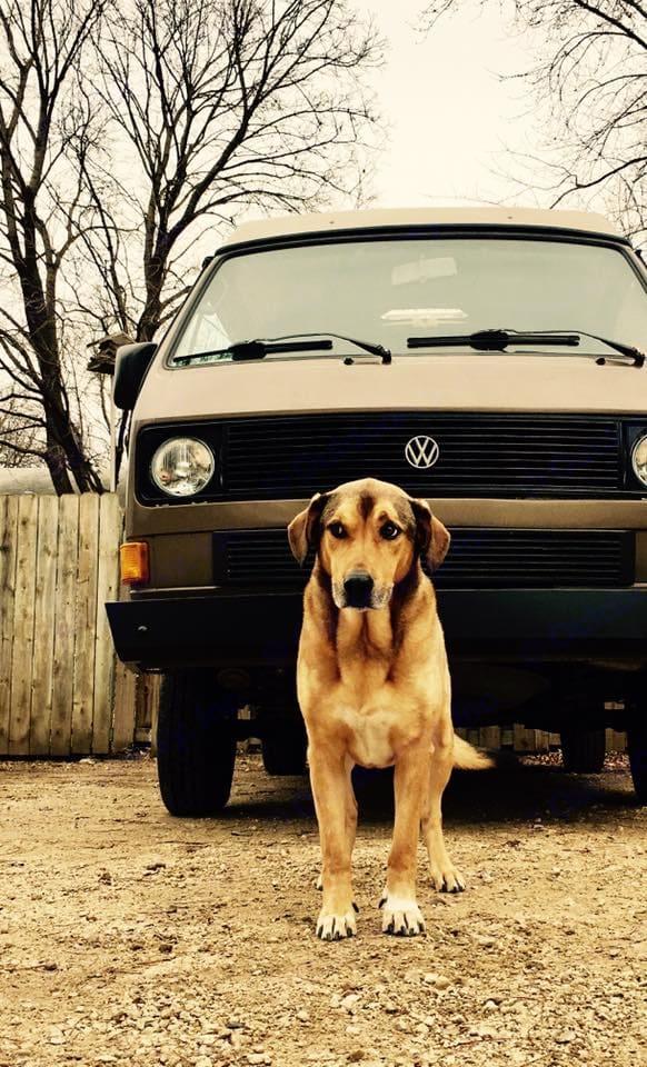 Ron with attitude by a cool VanGo van.. Volkswagen Vanagon 1986