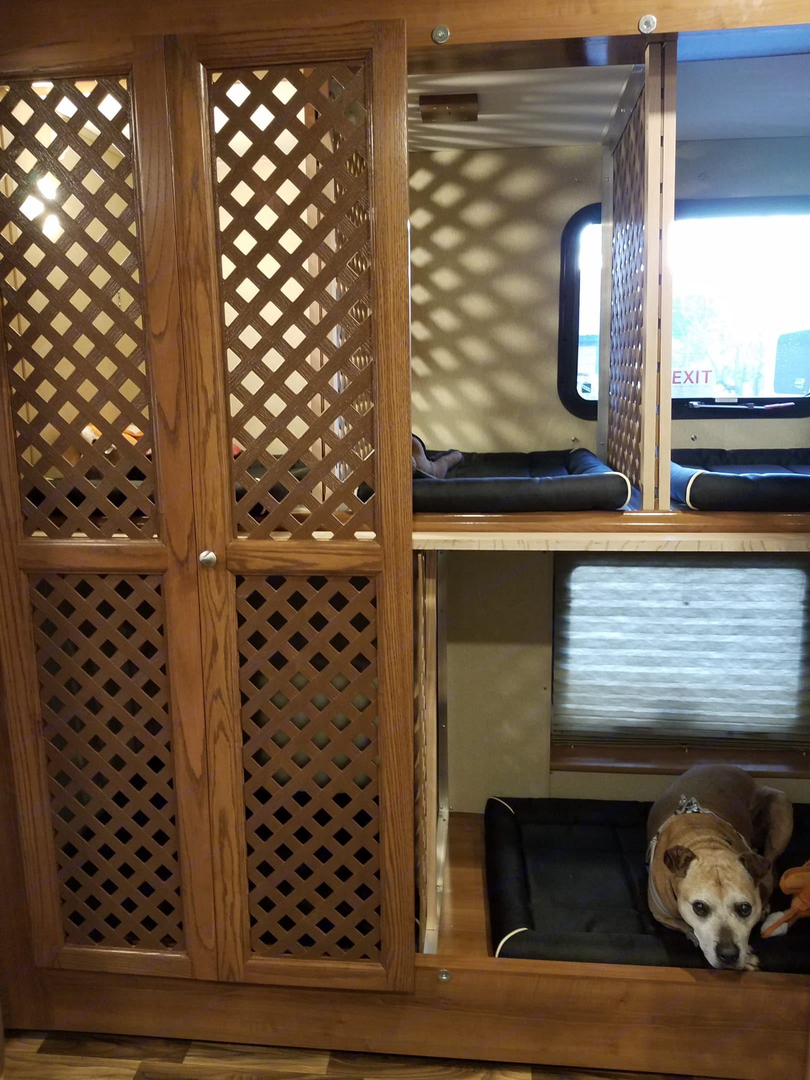 These bunks can be easily converted from a space for dog crates, to twin beds. . Coachmen Pursuit 2017