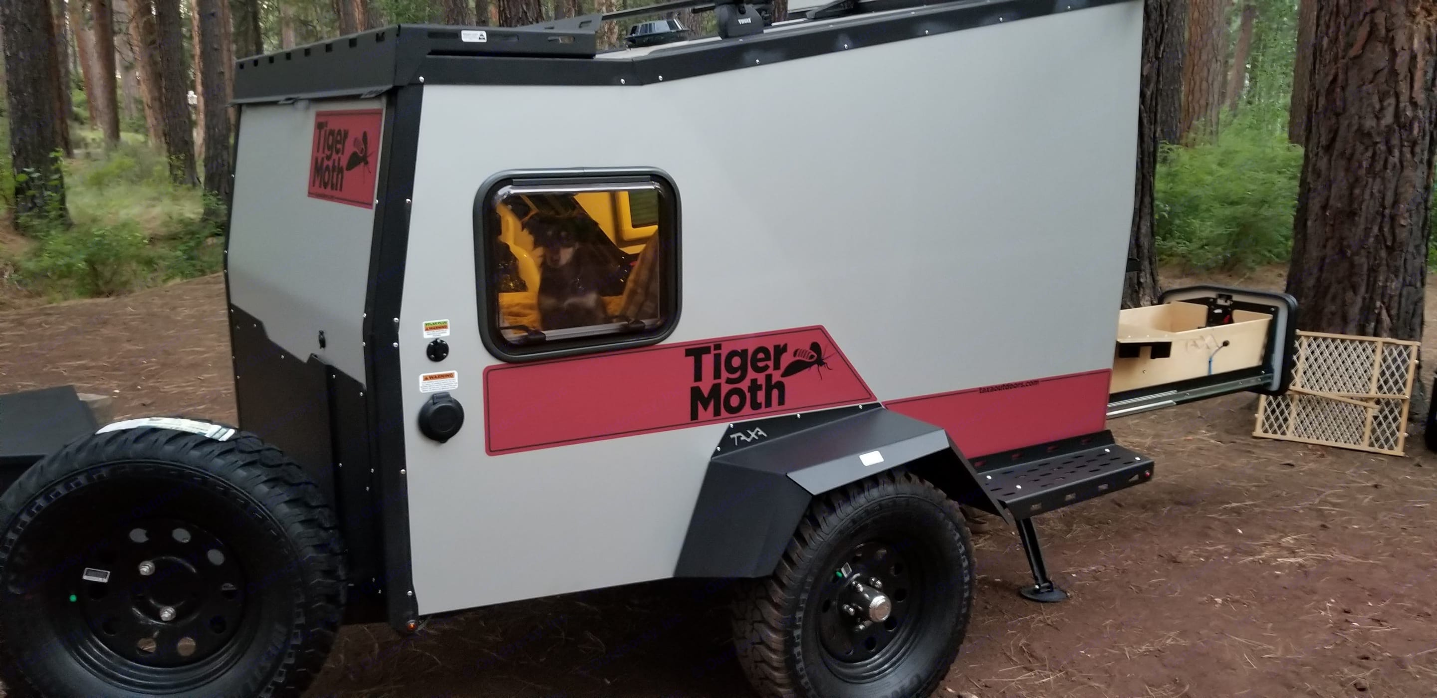 Our little dog loves sitting inside and people watching out the window.... TAXA Outdoors Tigermoth Camper 2018