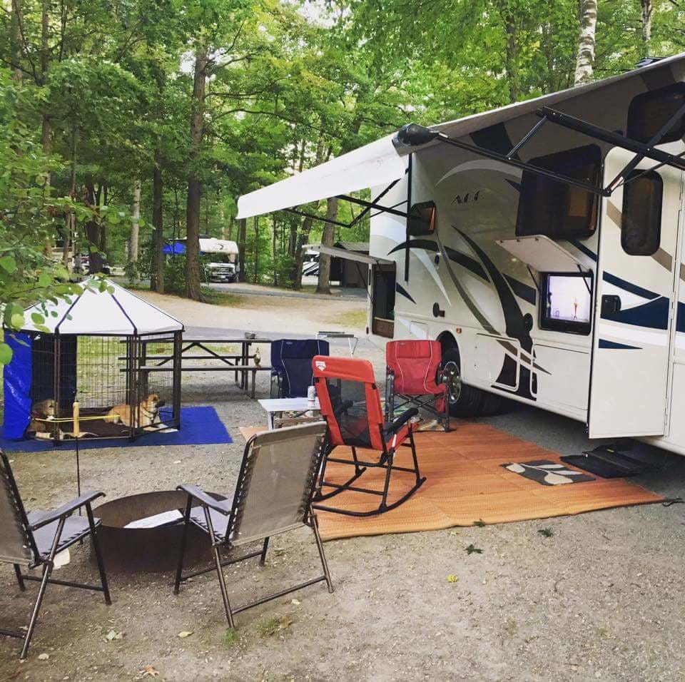 outdoor kitchen and outdoor entertainment (tv).  Dogs not included! :). Thor Motor Coach A.C.E 2016
