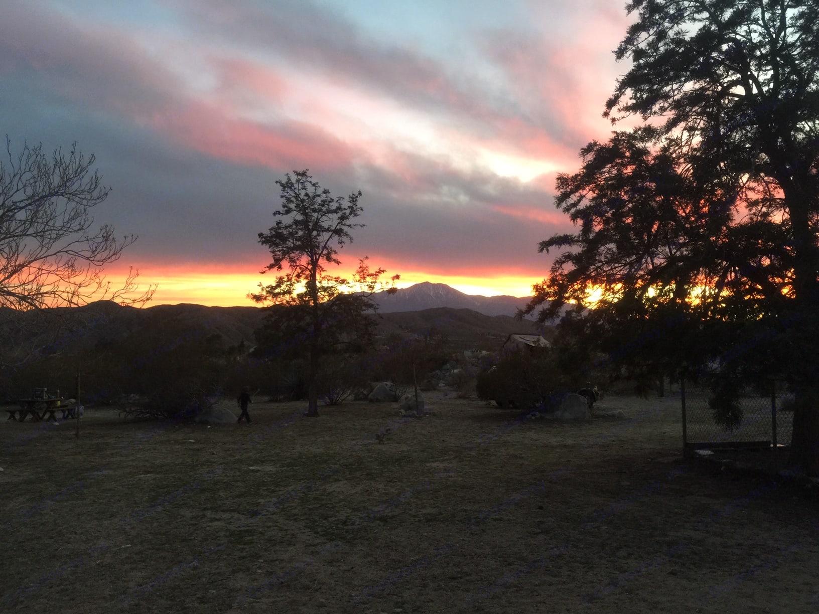 Gorgeous sunset at Joshua Tree!. Ford Explorer 2000