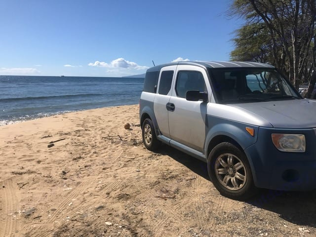 """Wake up to the Ocean with """"Darryl"""". honda element 2006"""