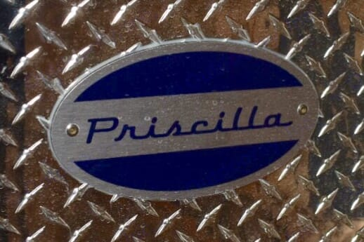 Priscilla. Other Teardrop 2019
