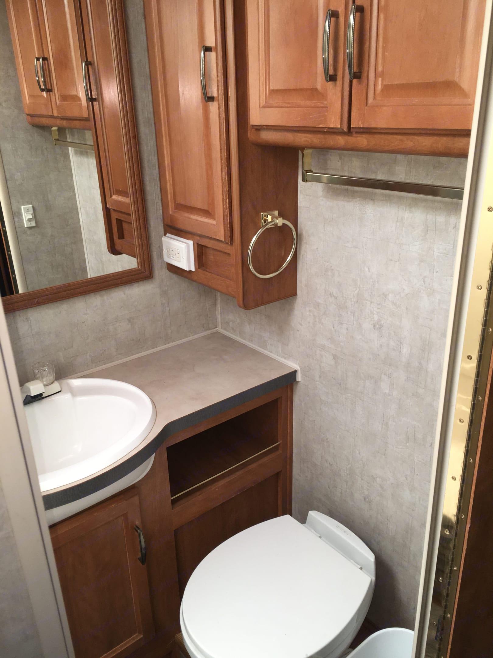 Bathroom sink. Fleetwood Terra 2005