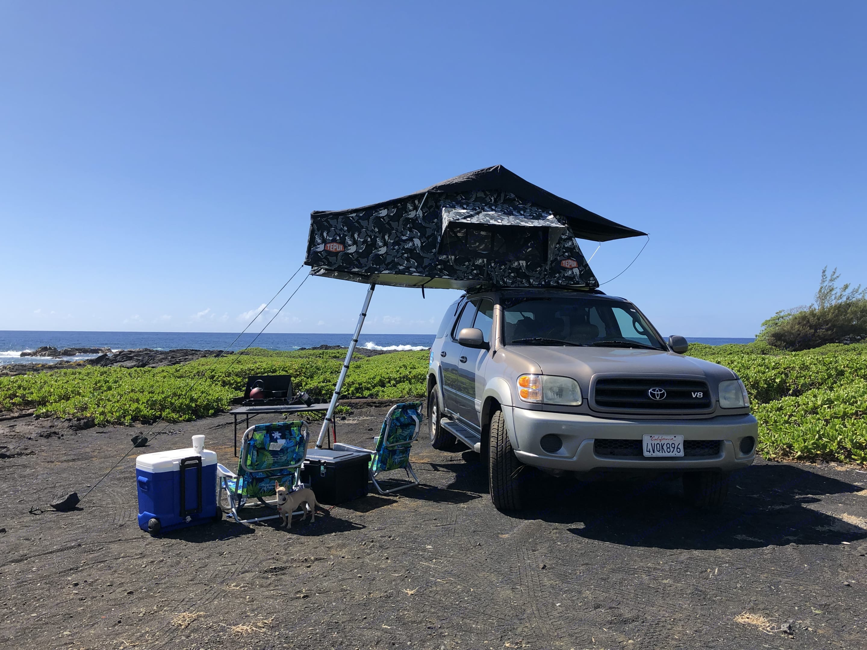 The Big Island is home to 11 of the worlds 13 climate zones! So much diversity! This is the way to experience it.. Toyota Sequoia 2002