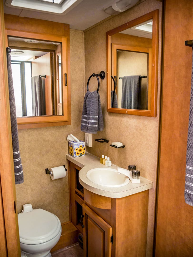 Private bathroom with plenty of cabinet space.. Forest River Sunseeker 2012