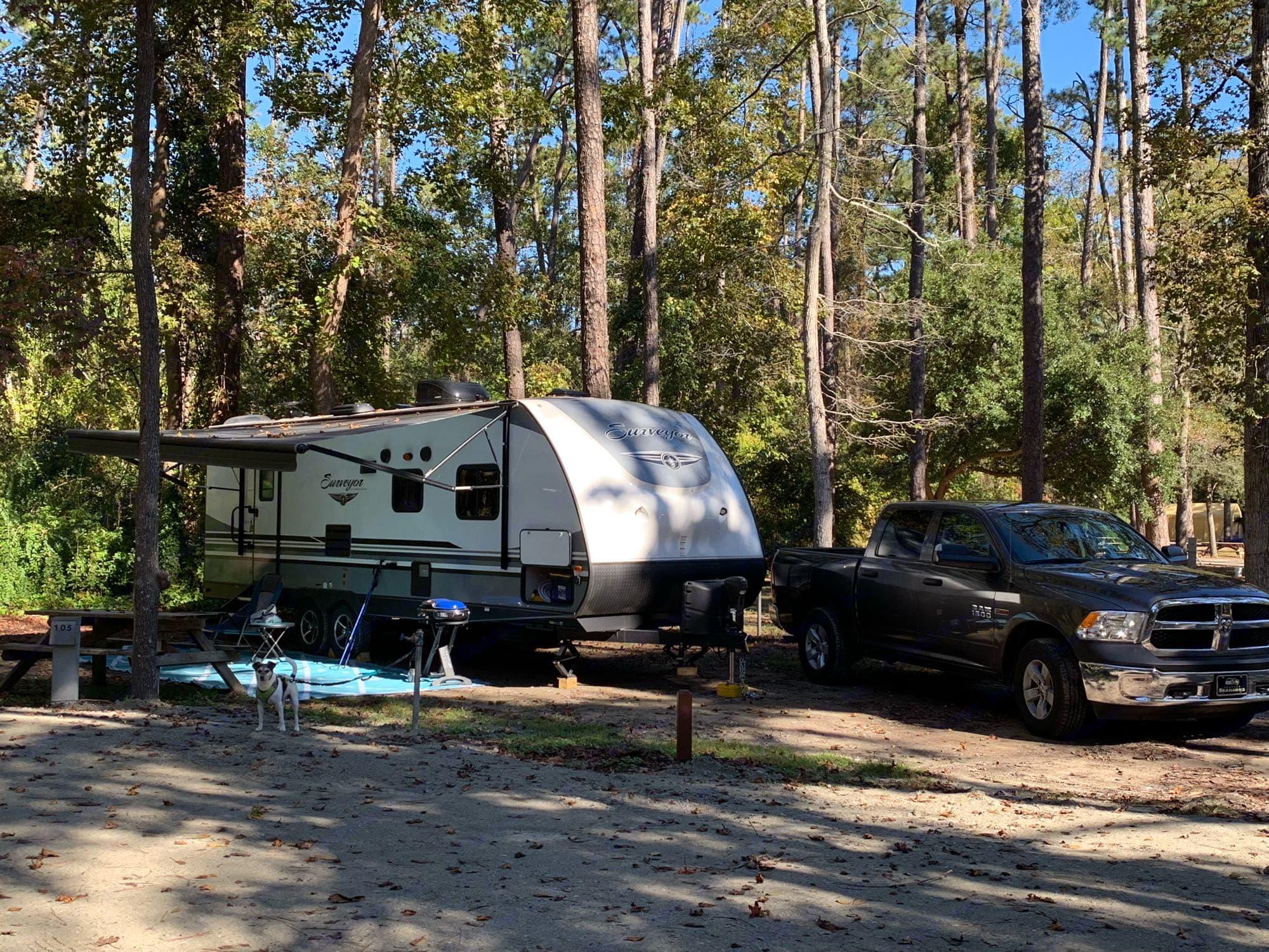ForestRiver Surveyor 2018