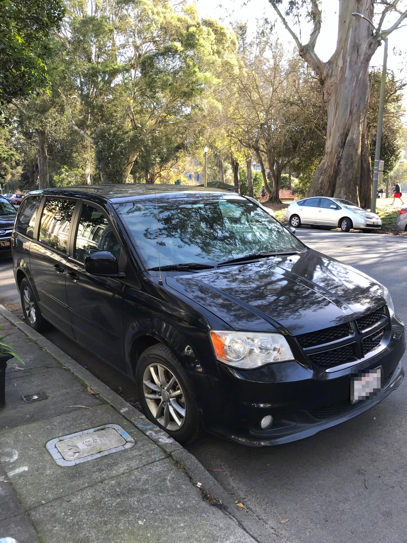There she is!. Dodge Grand Caravan 2013