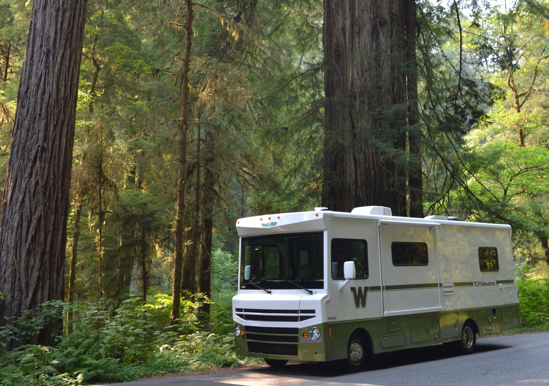 To the Majestic Redwoods.... Winnebago Itasca Tribute 2015