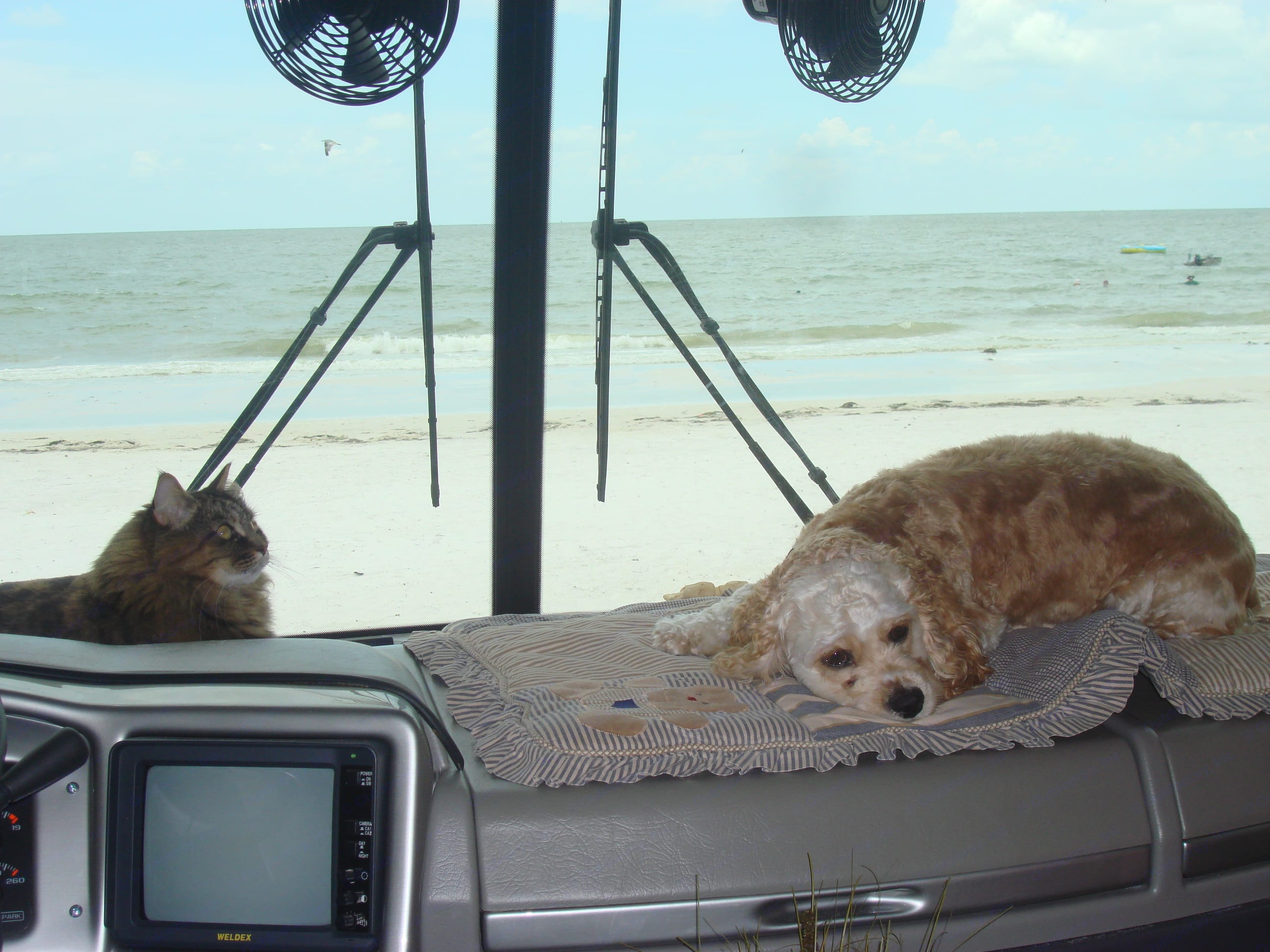 lazy afternoon. Fleetwood Southwind 2003