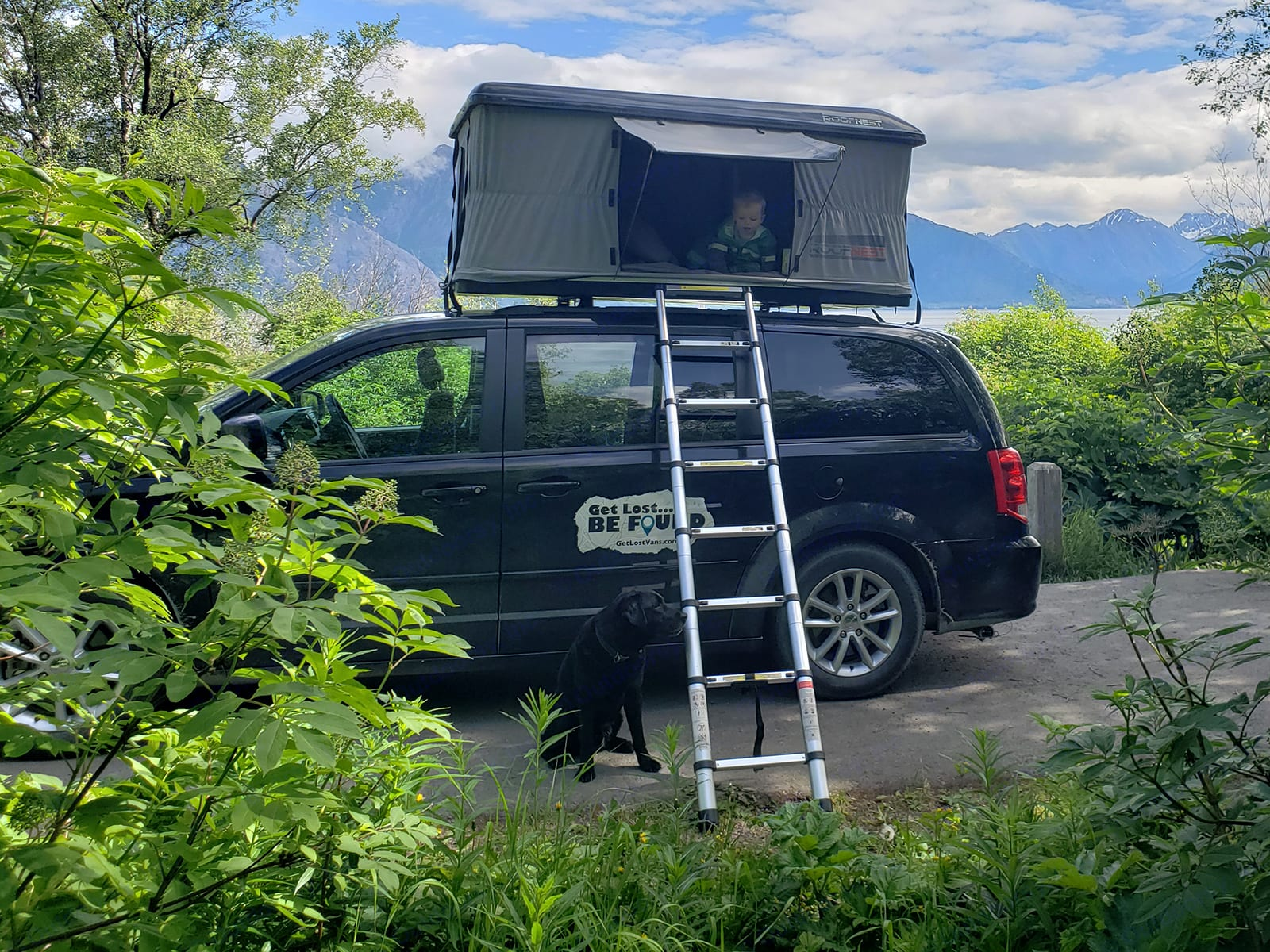 Pet Friendly Travel Van. Dodge Grand Caravan 2016