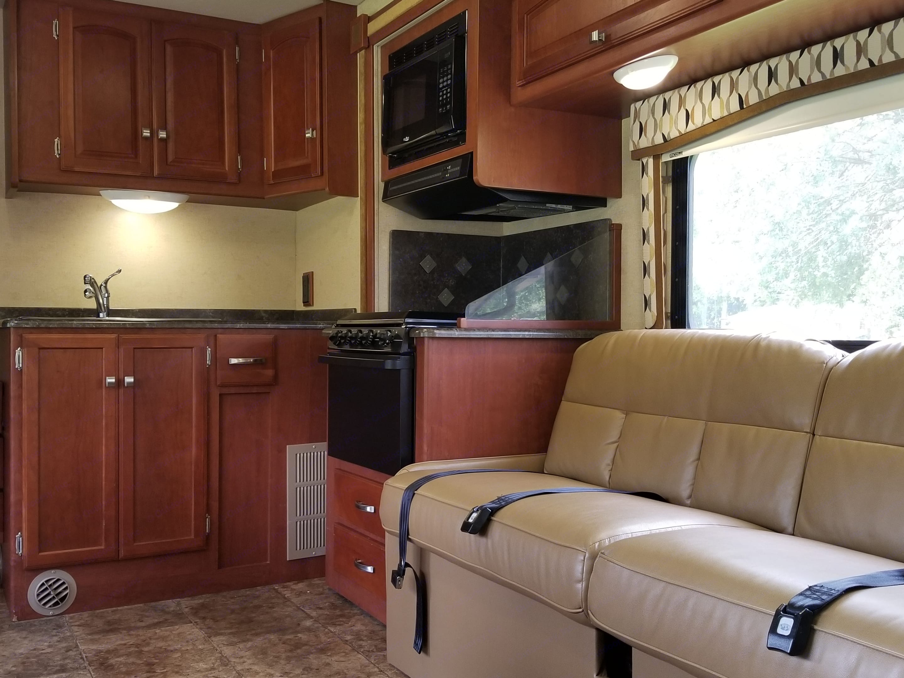 Living area, with comfy Leather couch. Winnebago Access 2012