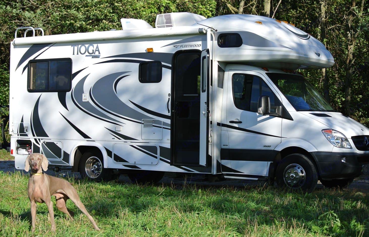 Our Weimaraner, Klaus and his favorite weekend getaway. Fleetwood Fleetwood Tioga Ranger 2011