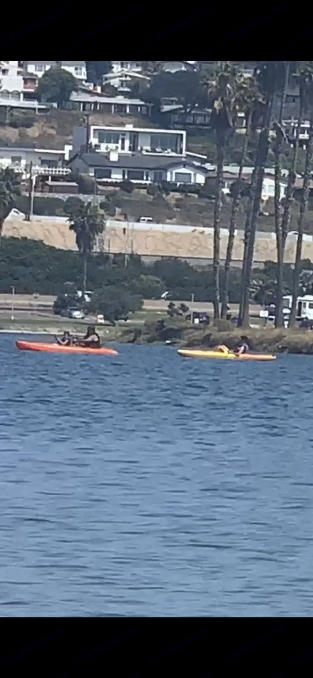 I have kayaks if you would like to rent those as well. Coleman Other 2021