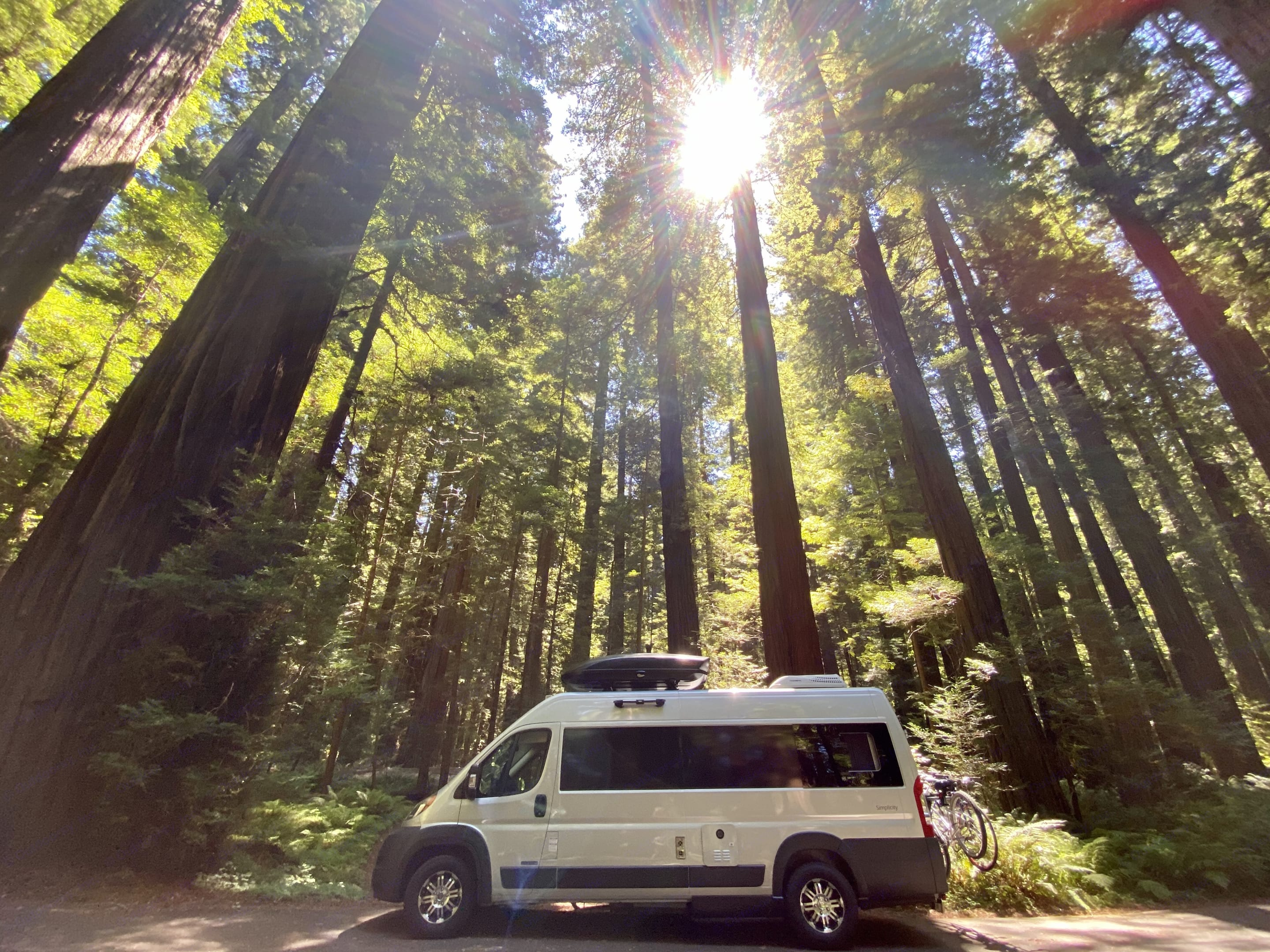 Somewhere in the Redwoods. Dodge Ram Promaster 3500 2019