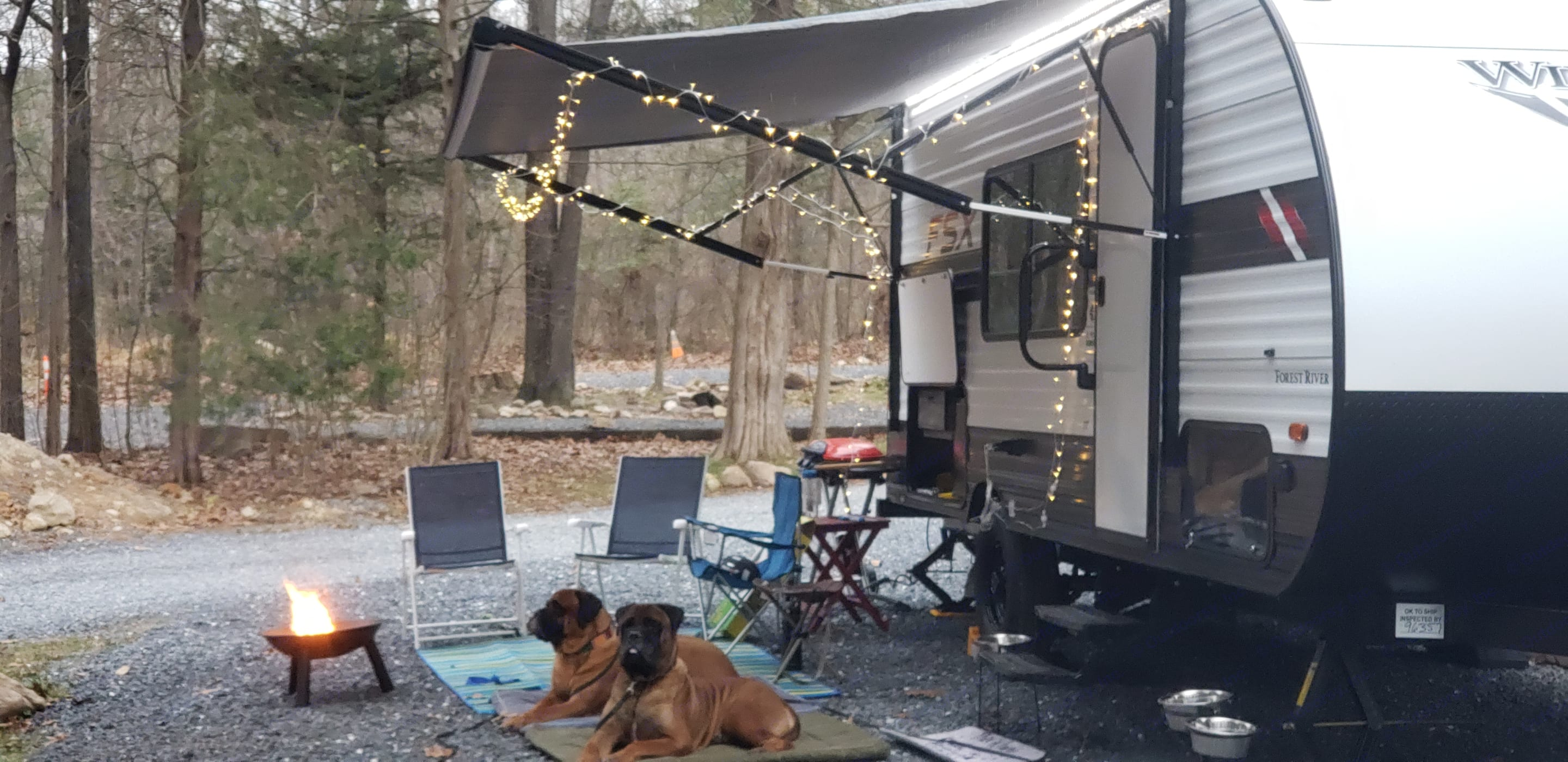 Fire Pit & Dogs. Forest River Wildwood 2021