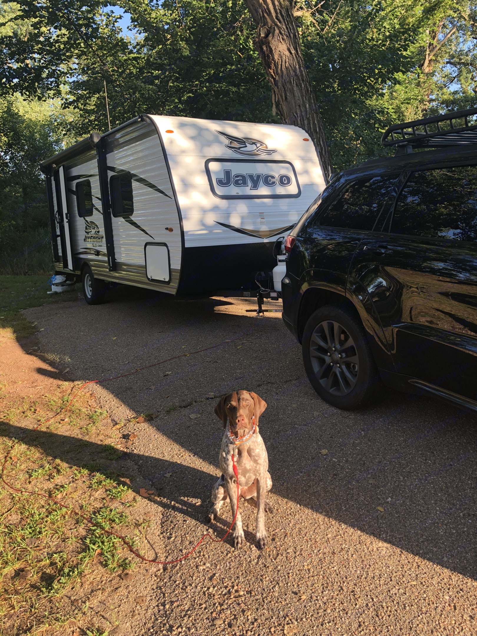Winnie is ready for a road trip! Are you?. Jayco Jay Flight 2018