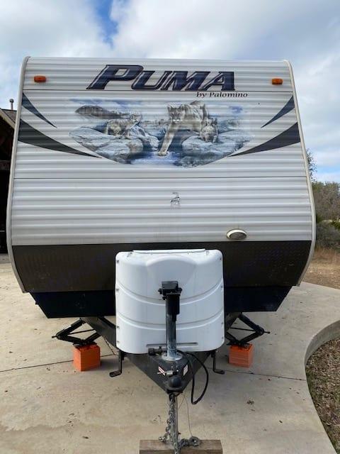 Palomino Puma 2012